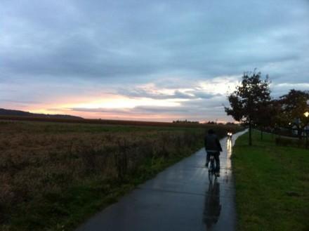 // voorlicht van fietsers / loopt uit in lange veg…